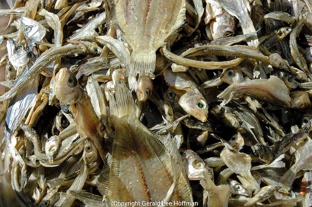 Sun dried fish Salvador, Brazil