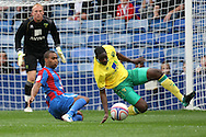 Picture by Paul Chesterton/Focus Images Ltd..26/7/11.Leon Barnett of Norwich City and Jermaine Easter of Crystal Palace in action during a pre season friendly at Selhurst Park stadium, London