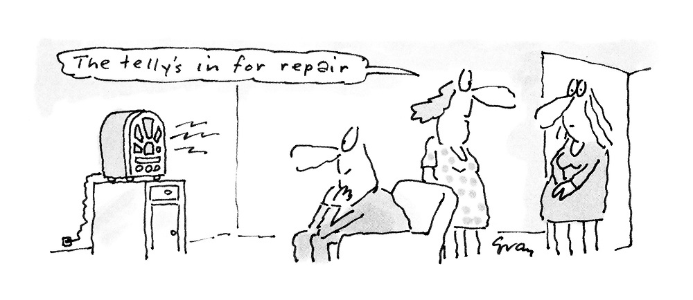 """""""The telly's in for repair."""""""