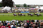 Hippodrome de Chantilly, France. June 12th 2011.Prix de Diane Longines 2011.Prix du Chemin de Fer du Nord