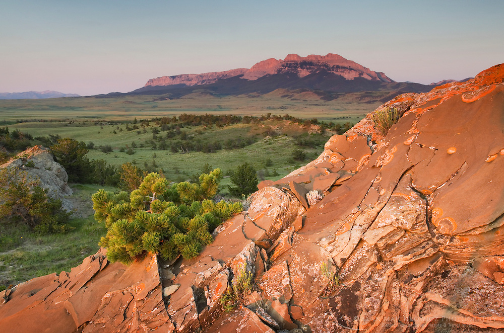 Sandstone rock formations glowing in the sunrise light, Rocky Mountain Front Range near Choteau Montana