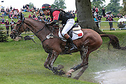 DON GENIRO ridden by Alex Hua Tian (China) winner of the Masters event Bramham International Horse Trials 2016 at  at Bramham Park, Bramham, United Kingdom on 11 June 2016. Photo by Mark P Doherty.
