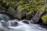 Moss covered rocks along Silverhope Creek just outside of Silver Lake Provincial Park near Hope, British Columbia, Canada