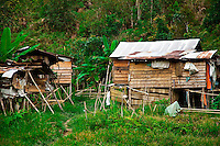 These shacks on the edge of the jungle are a temporary home to a Penan family while their children attend school.  The Penan traditionally are nomads of the jungle and many have not been able to fully acclimatise to living in towns.