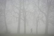 Walking figure in a London park on an early misty morning.
