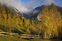 Culture landscape and Mt. Rock of the King, National Park Piatra Craiului, Transylvania, Southern Carpathians, Romania