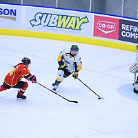 4th year defender Jolene Kirkpatrick (11) of the Regina Cougars in action during the Women's Hockey Home Game on November 26 at Co-operators arena. Credit: Arthur Ward/Arthur Images
