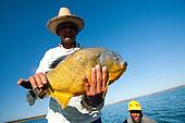 Pesca | Fishing