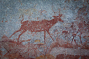A kudu antelope depicted in San bushman rock paintings, estimated at around 2000 years old, in Nswatugi Cave in Matobo National Park, Zimbabwe.
