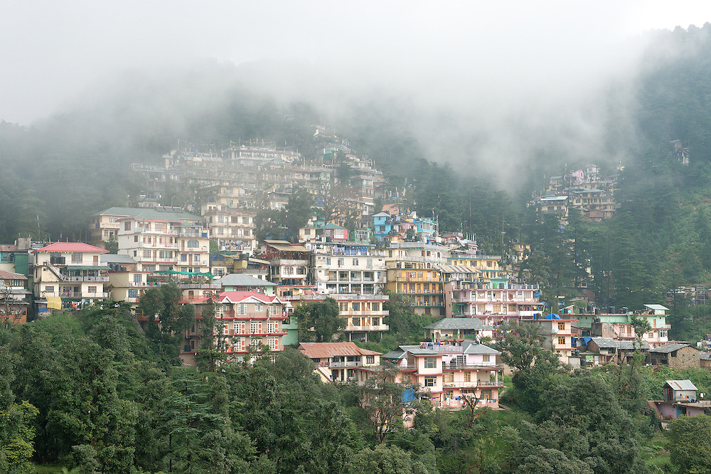 Cloud and Heavy Fog at McLeod Ganj
