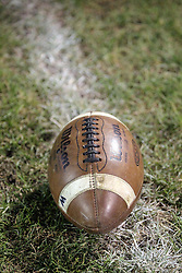 31 October 2014: Springfield Southeast Spartans v Normal Community West Wildcats Football in Normal Illinois