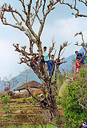 Locals gather for celebration in the foothills of the Himalayas at Pokhara in Nepal