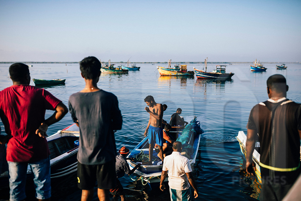 Fishermen taking in their daily catches on the Jaffna Peninsula, Sri Lanka, Asia