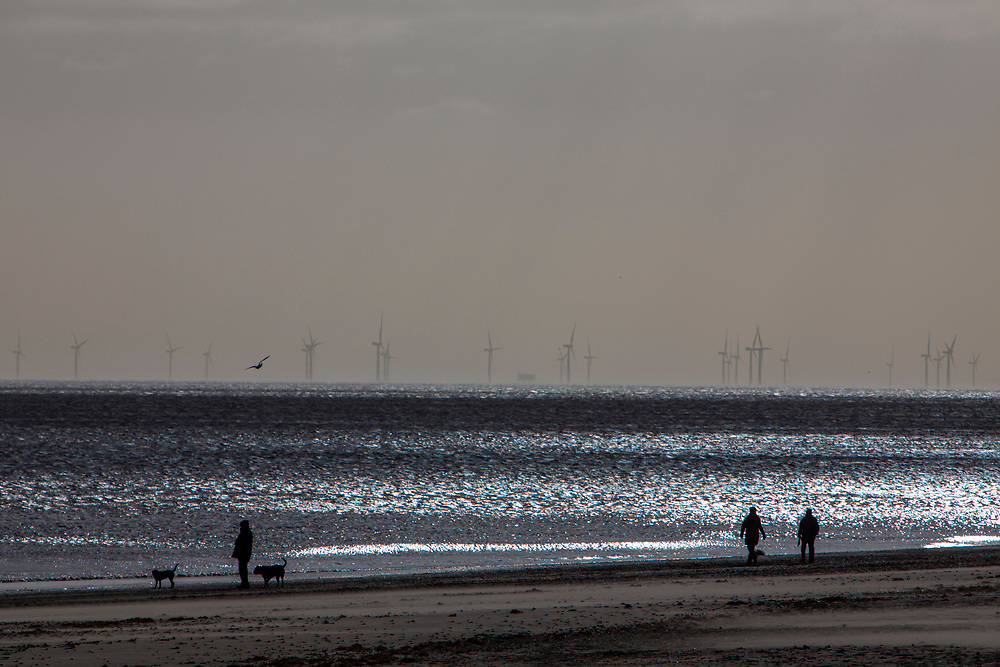 Dog walkers on Mablethorpe beach enjoy the winter sunshine with The Lincs Wind Farm in the distance.  It is a 270MW offshore wind farm 8 kilometres (5.0mi) off Skegness Lincolnshire, on the east coast of England in the North Sea. It cost over £1billion to build including electrical transmission links and was completed in 2013. Skegness, Lincolnshire, United Kingdom.   (photo by Andrew Aitchison / In pictures via Getty Images)