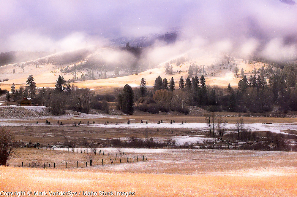 snow dusting on meadow, Stanley