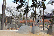 Grevy's zebra (Equus grevyi) amongst the trees in the Zone Sahel-Soudan of the new Parc Zoologique de Paris or Zoo de Vincennes, (Zoological Gardens of Paris or Vincennes Zoo), which reopened April 2014, part of the Musee National d'Histoire Naturelle (National Museum of Natural History), 12th arrondissement, Paris, France. Picture by Manuel Cohen