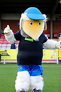 Haydon the Womble prior to kick off during the EFL Sky Bet League 1 match between AFC Wimbledon and Plymouth Argyle at the Cherry Red Records Stadium, Kingston, England on 21 October 2017. Photo by Matthew Redman.