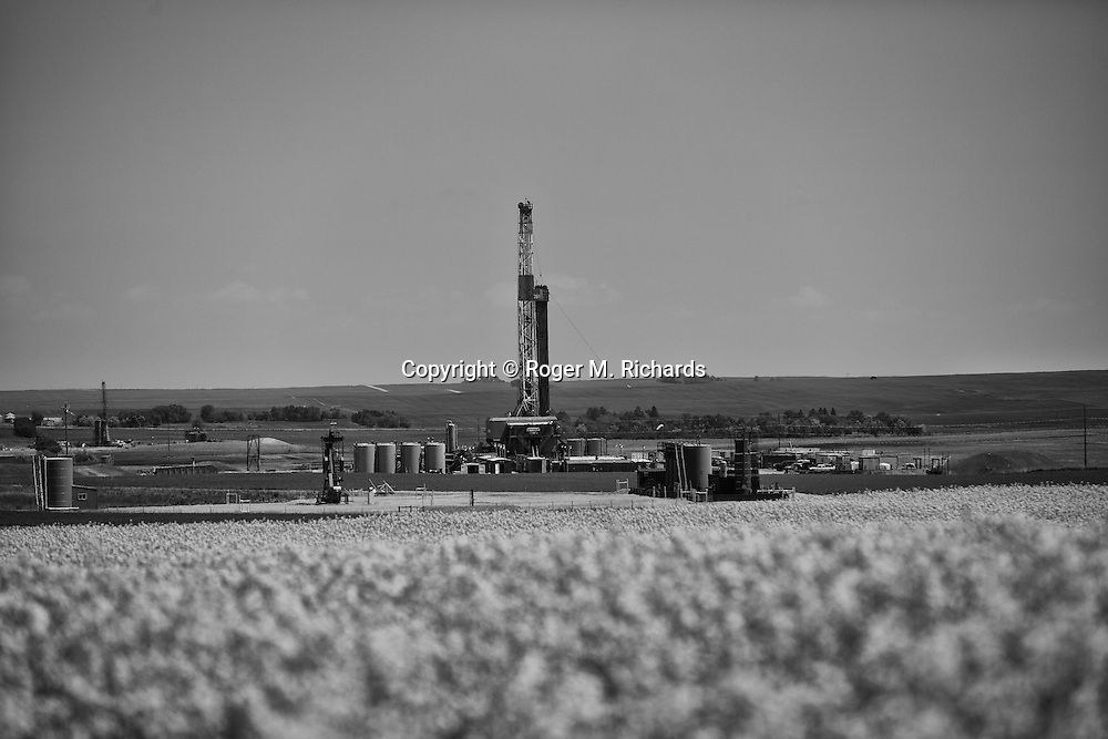 An oil drilling rig operates on the prairie among canola near Williston, North Dakota. The Bakken Shale formation in North Dakota contains some of the richest deposits of oil and gas in the world. This has led to a boom in hydraulic fracturing (fracking) in the state and region, with considerable economic benefits but also negative consequences for residents way of life and environment of the area.