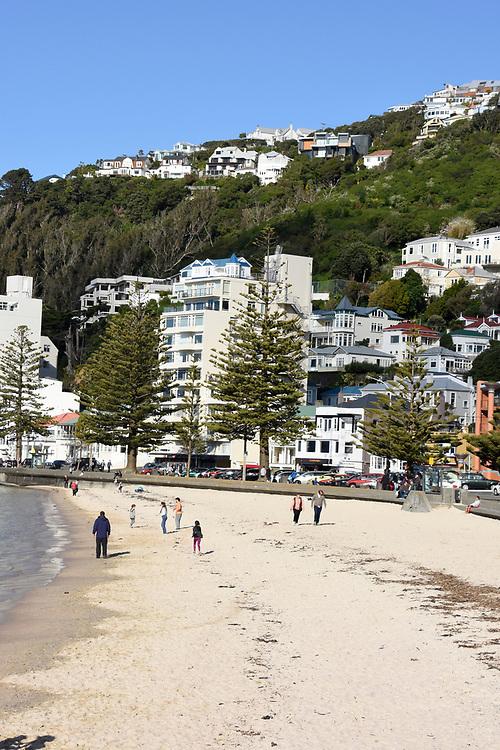 The beach at Wellington