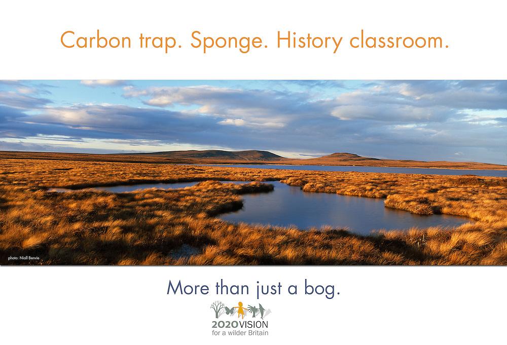 More than just... a bog