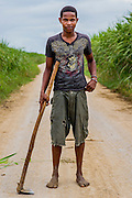 Pedro Santana, 19, poses on a batey road. He and his workmates will edge the cane fields in preparation for burning. The burning process clears out the leafy underbrush and allows for speedier cutting of cane during harvest season in the Dominican Republic.