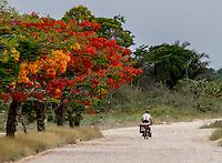 Man biking in Belize
