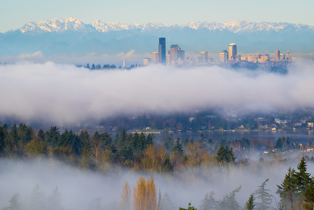 United States, Washington. Lake Washington, Seattle skyline and Olympic mountains viewed from Bellevue on a foggy day.