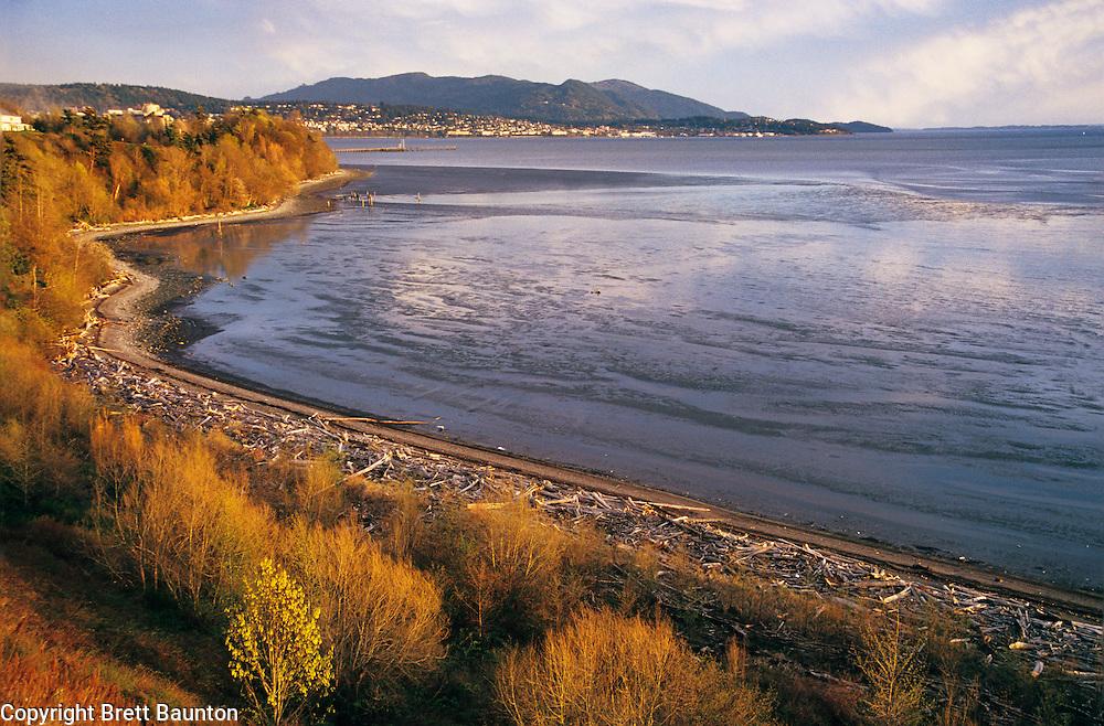 Bellingham Bay Overlook, Fall, Fairhaven and Chuckanut Mts, WA