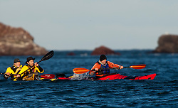 Scottish Sun sports editor Iain King tales part in a practise session for his charity kayak challenge, in the waters of the harbour at St Abbs..Pic © Michael Schofield...