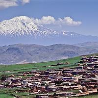 Urartu, Ararat