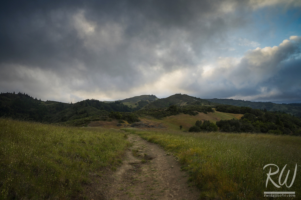 Hiking Trail in Mount Tamalpais Watershed, Marin County, California