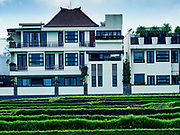 10 AUGUST 2017 - UBUD, BALI, INDONESIA: A high end tourist hotel that charges about $300 (US) per night, overlooks a rice field about 1.5 kilometers from downtown Ubud. Rice is the most important crop grown on Bali and is important as a food source and a symbol of Balinese culture. In accordance with Balinese tradition, men transplant the young rice plants from nurseries to the fields and women harvest the rice when it matures.     PHOTO BY JACK KURTZ