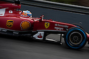 Circuito de Jerez, Spain : Formula One Pre-season Testing 2014. Fernando Alonso (SPA), Ferrari