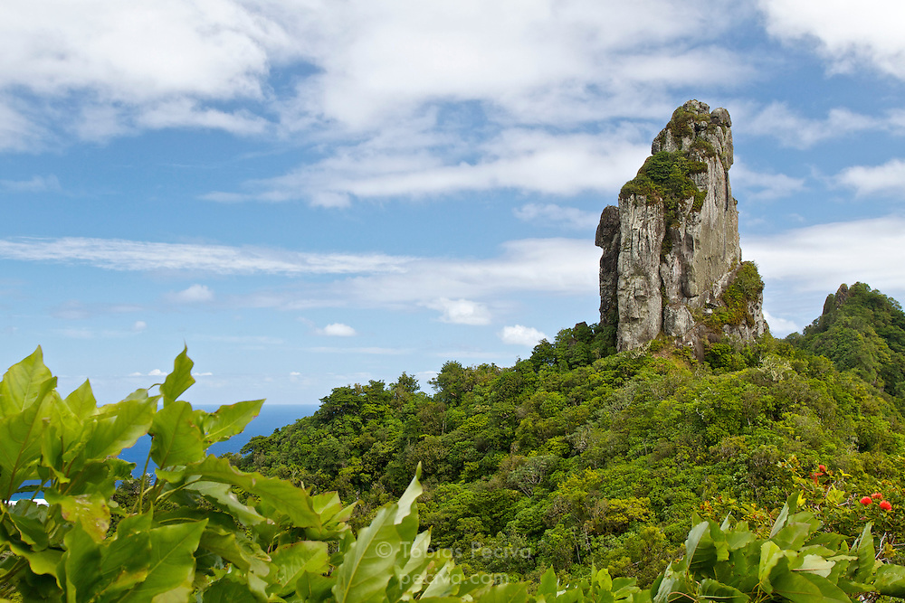 The Needle, halfway along the Cross Island Track on the island of Rarotonga, in the Cook Islands.