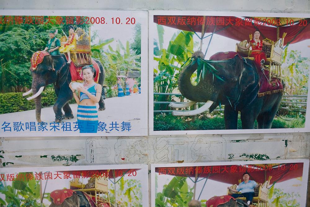 Tourist photos at Dai Minority Park.