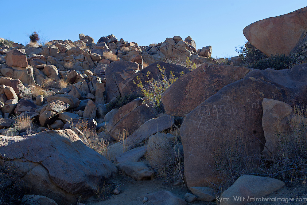 USA, California, Joshua Tree. Coyote Hole Petroglyphs.