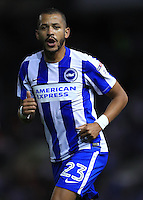 Brighton and Hove Albion's Liam Rosenior