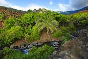 Kalalau Stream, Napali Coast, Kauai, Hawaii