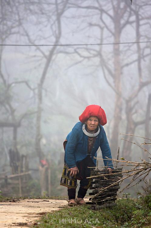 Hilltribe villages around Sapa. Red Dzao woman.