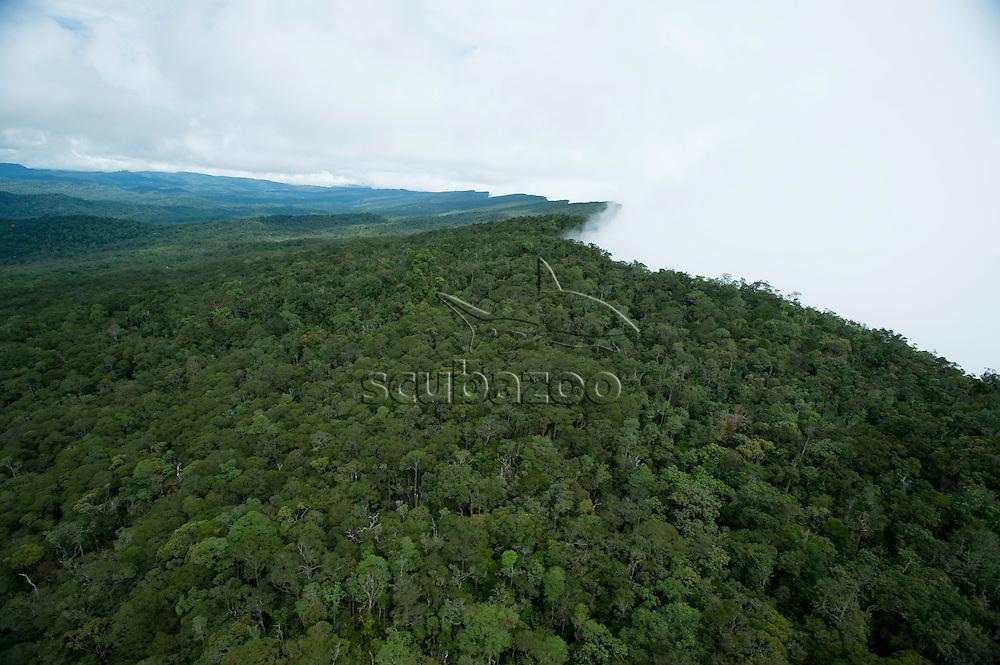 Northern Ridge of Maliua Basin, Sabah, Borneo, East Malaysia.