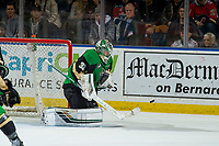 KELOWNA, BC - JANUARY 19: Ian Scott #33 of the Prince Albert Raiders makes a save against the Kelowna Rockets  at Prospera Place on January 19, 2019 in Kelowna, Canada. (Photo by Marissa Baecker/Getty Images)***Local Caption***