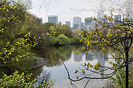 The Lake in Central Park with a view of the midtown skyline.