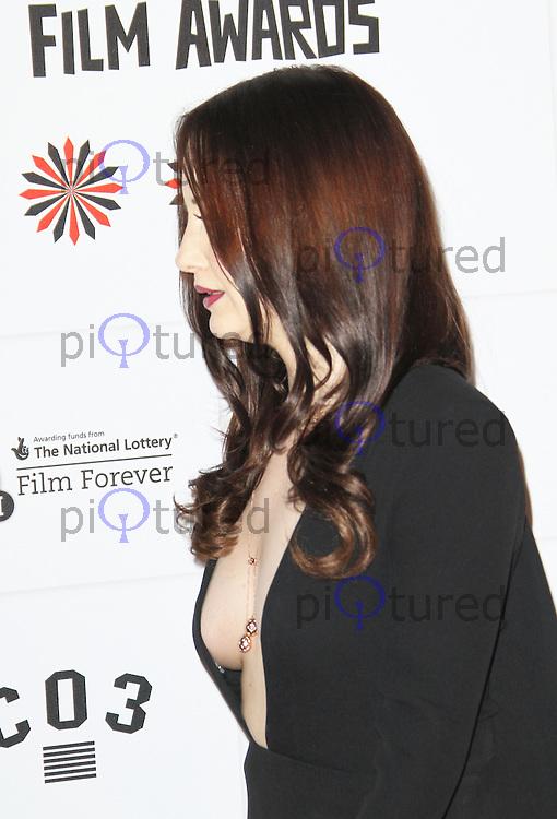 LONDON - DECEMBER 09: Andrea Riseborough attended The British Independent Film Awards at the Old Billingsgate Market, London, UK. December 09, 2012. (Photo by Richard Goldschmidt)