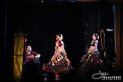 Cairo Caravan 2012 - Performance Portraiture and Stage Photography by Lee Corkett