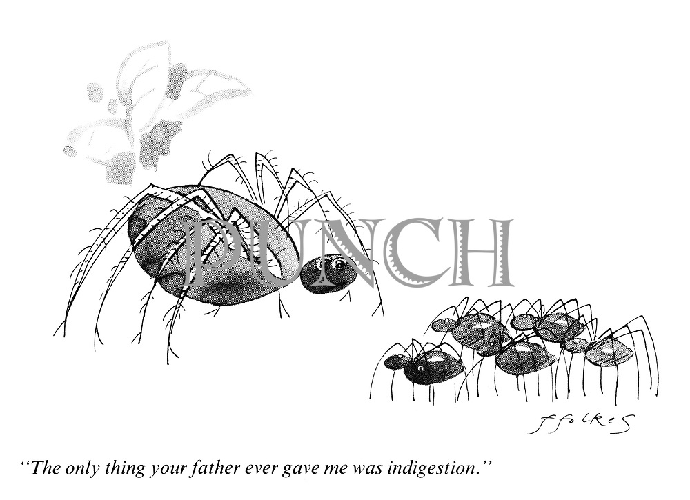 """The only thing your father gave me was indigestion."""