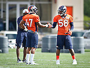 SHOT 7/25/13 9:34:04 AM - The Denver Broncos Von Miller #58 high fives teammate Lerentee McCray #47 as the defense runs through drills during opening day of the team's training camp July 25, 2013 at Dove Valley in Englewood, Co. Miller is appealing a possible four game suspension with the league. (Photo by Marc Piscotty / © 2013)