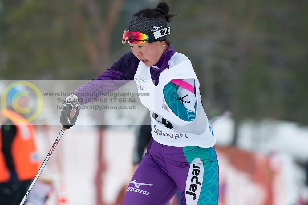 ABE Yurika, JPN, Short Distance Biathlon, 2015 IPC Nordic and Biathlon World Cup Finals, Surnadal, Norway
