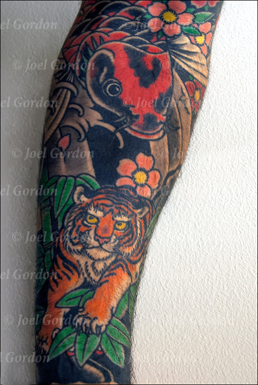 Close up of tattoo sleeve of Koi Fish and Tiger on his arm.<br />
