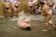 Wrestlers of the Professional Sumo Team (Musahigawa Beya) go through practice routines at their stable in Tokyo, Japan. A professional sumo wrestler sends his opponent tumbling to the floor during practice with his team.