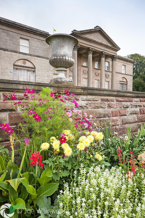 Dahlias and Cosmos brighten a border on one of the terraces leading down to the Italian Garden at Tatton Park, Cheshire.